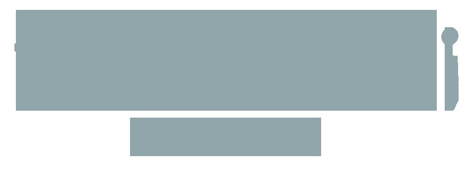 niaz ali WEB DESIGNER AND COPYWRITER website logo